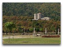 отель Royal Batoni: Территория
