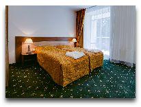 отель Sanatorija Egle Birstonas: Двухместный номер