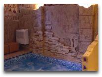 отель Sarunas: Бассейн в сауне