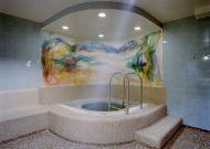 отель Scandic Hotel Hasselbacken: Джакузи