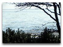 отель Scandic Rannahotell: Вид на море с балкона