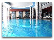 отель Shahdag Hotel&Spa: Бассейн