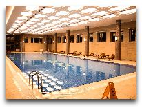 отель Shaki Palace Hotel: Бассейн