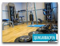 отель Коттедж Sjungarbacken: Тренажеры
