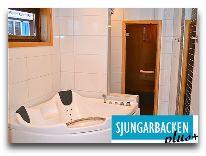 отель Коттедж Sjungarbacken: Джакузи