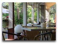 отель Skalva (Nida): Летняя терраса