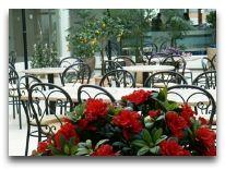 отель Spa Hotel Trasalis: Зимний сад