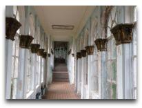 отель СПА Ризорт: Территория отеля