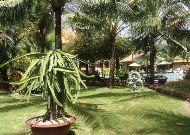отель Sunny Beach Resort: Территория отеля-