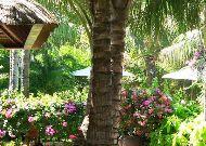 отель Sunsea Resort Mui Ne: Территория отеля