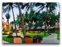 отель Terracotta Resort & SPA: Территория отеля