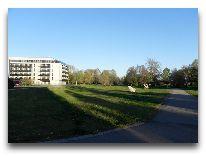 отель Tervis Medical SPA: Дорога в парк за отелем