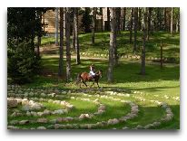 отель Парк отдыха и развлечений Tony Resort: Катание на лошадях