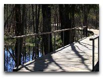 отель Парк отдыха и развлечений Tony Resort: Поход по болотам