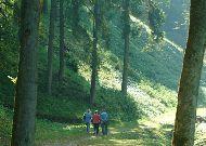 санаторий Versmė: Прогулки по лесу