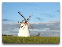 отель Vihula Manor Country Club & Spa: Ветрянная мельница