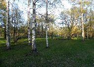отель Viiking: Парк вдоль моря
