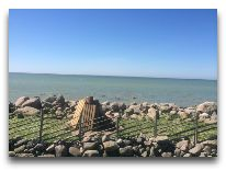 отель Villa Mary: Вид на море с лужайки