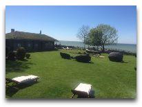 отель Villa Mary: Место для отдыха на лужайке