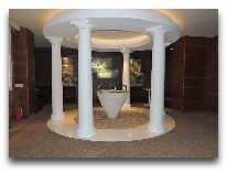 отель SPA Vilnius Druskininkai: Бювет минеральной воды