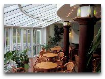 отель Violeta: Зимний сад