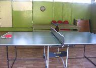 отель Высокий Берег: Настольный теннис