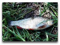 отель Высокий Берег: Рыбалка