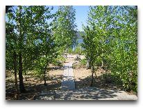 санаторий Зеленый бор: Тропинка к озеру