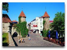 Эстония: общая информация, фото: Вируcские ворота