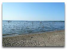 Эстония: общая информация, фото: Пляж в Пирита