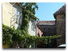 Эстония: общая информация, фото: Дворики Старого города
