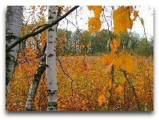 Латвия: информация для туристов, фото: Осень