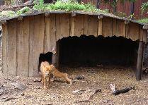 Зоо и сафари парк Kolmården: А здесь мы живем