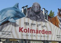 Зоо и сафари парк Kolmården: Зоопарк