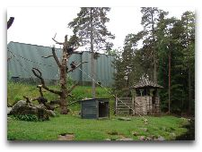 Зоо и сафари парк Kolmården: Там где живут обезьяны