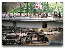 Достопримечательности Бреста: Музеи и Памятники: Археологический музей Берестье.