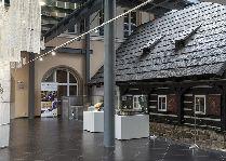 Достопримечательности города: Музей истории Карконоши