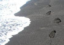 Черные пески Уреки