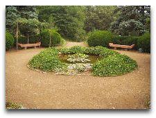 Достопримечательности Тбилиси: Уголок ботанического сада