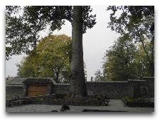 Дворец Шекинских Ханов