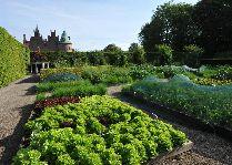 Замок Эгесков: Огород