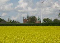 Замок Эгесков: Поля с рапсом