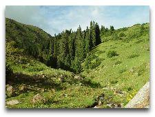 Природа Киргизии