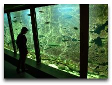 Круизы на остров Борнхольм (Дания): Аквариум на острове