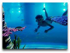 Лаландия: Под водой