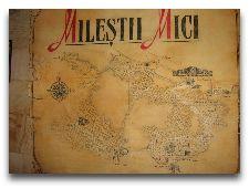 Милештий Мичь: Карта