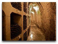 Милештий Мичь: Ячейки с винами