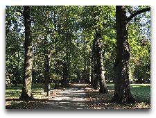 Парки Несвижа: Старый парк