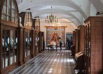 Несвижский замок: Библиотека