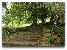 Однодневные экскурсии по Батуми: Ботанический сад